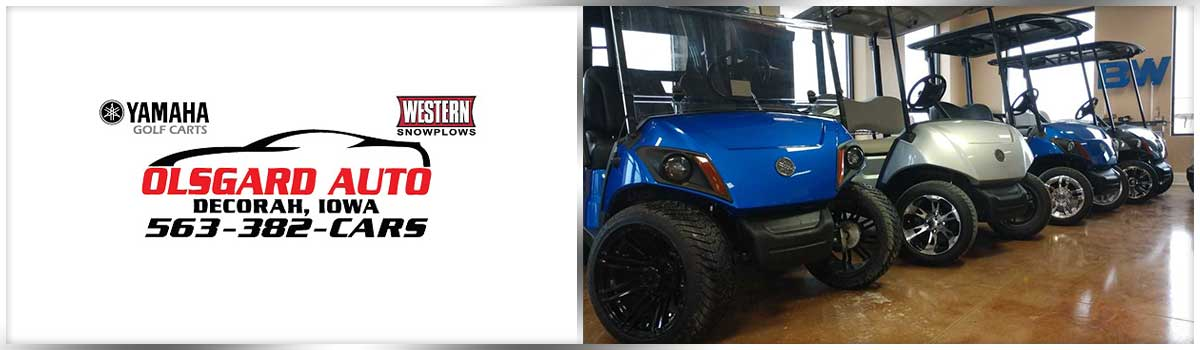 Sweitzer S Custom Painted Golf Cart Bos on