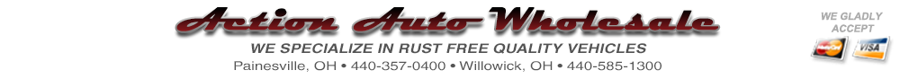 Action Auto Wholesale - Painesville, OH