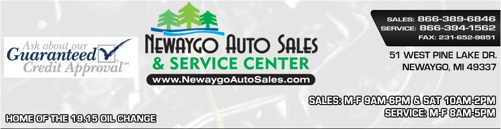 Newaygo Auto Sales and Service Center - Newaygo, MI