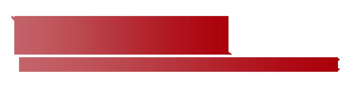 Platinum Sales LLC