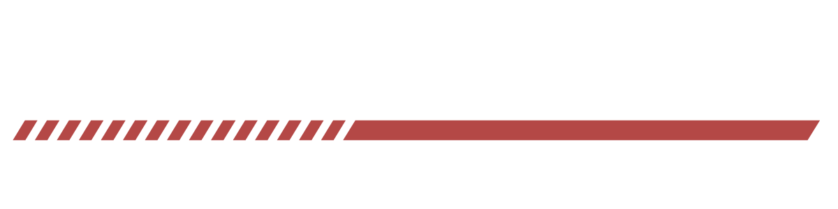 Import Auto Sales