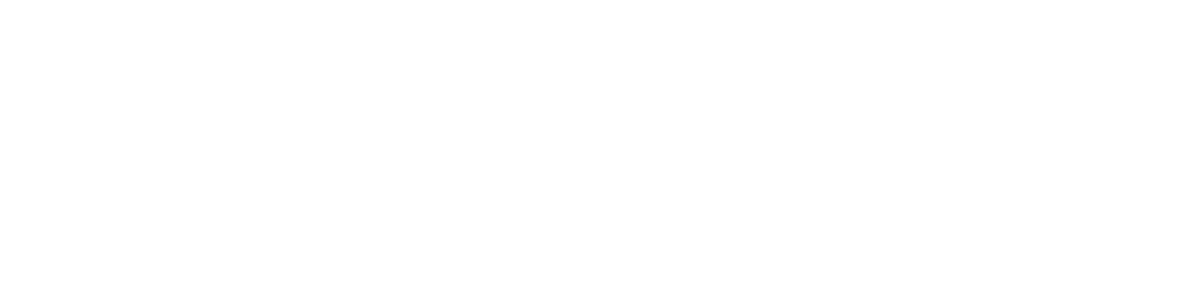South Bay Motors